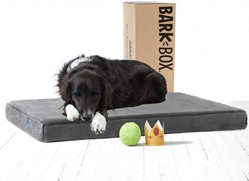 12. BarkBox Memory Foam Platform Dog Bed